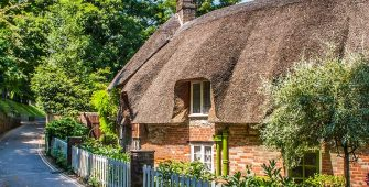 Thatch Roofed Home