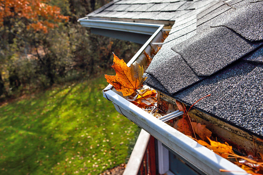 How to Save Money on Gutter and Roof Service