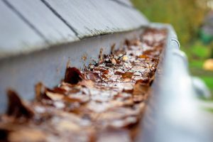 Leaf Clogged Gutter