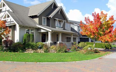 Roof Repairs to Consider as Autumn Approaches