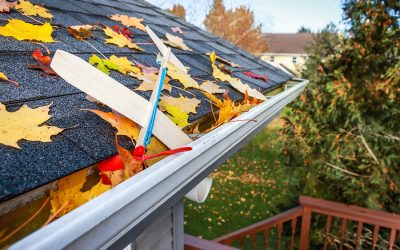 What You Didn't Know About Gutter Maintenance